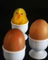jajka w kieliszkach